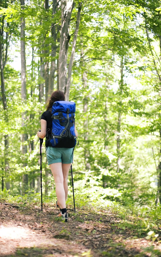 Download Woman Walking In The Forest Stock Photo - Image: 26016834
