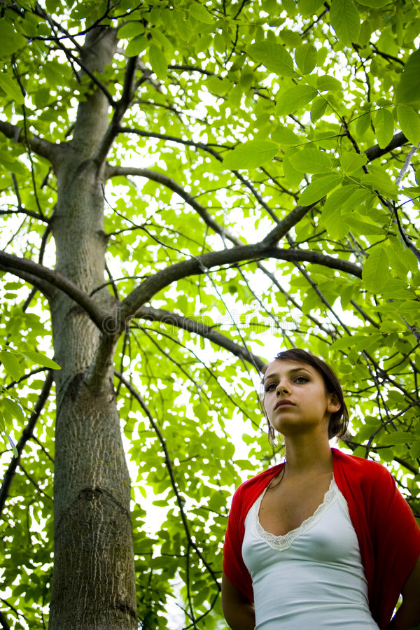 Woman walking in forest stock images