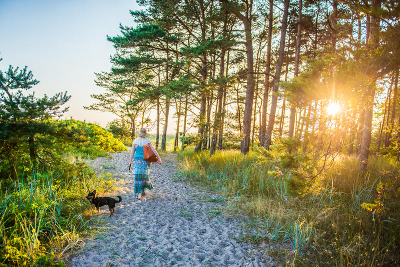 Woman walking in forest. Sand path near sea with dog at sunset stock images