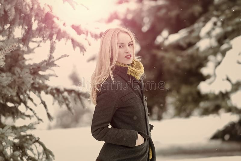 Woman walking in forest on winter day. Girl with long blond hair on white snow landscape. Leisure and vacation. Christmas and new year concept stock photos