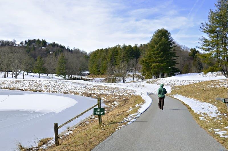 Woman Walking by Frozen Lake stock photo