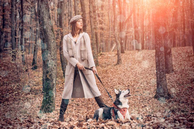 Woman walking with husky dog autumn forest. Pedigree dog concept. Girl enjoy walk with husky dog. Best friends stock images