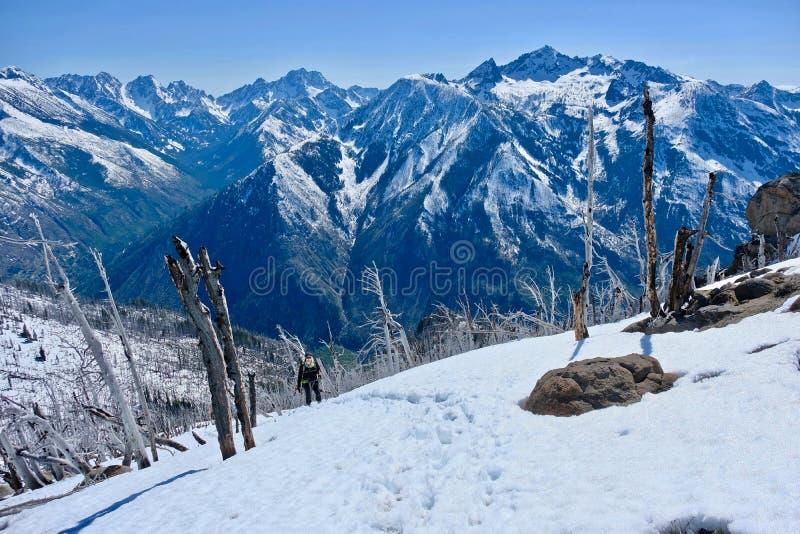 Woman walking in mountains. stock photo