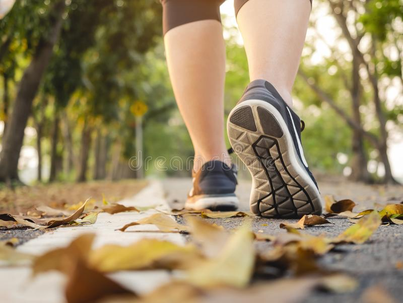 Woman walk in park outdoor Trail exercise healthy lifestyle. Woman walking in Park outdoor Workout Trail walkway Exercise Healthy lifestyle Fall season stock images