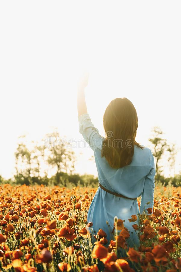 Woman walking in poppy field on sunny summer day. Back view of brunette young woman walking in red poppy flower field on sunny summer day. Romantic girl waving stock photo