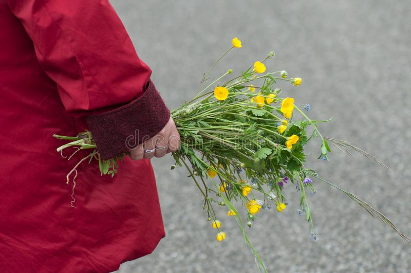 woman walking on the road with red coat taking a wild bouquet flowers in hand stock photos