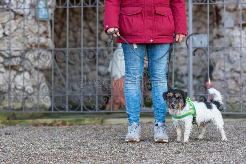 Woman is walking with a small cute obedient Jack Russell Terrier dog. Resting at a grotto with a saint figure. Woman is walking with a small obedient Jack stock photo