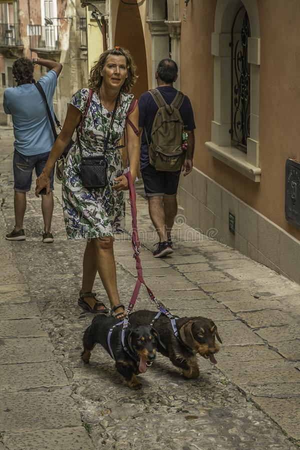 Woman walking two hound dogs in the old downtown historic district of Ortigia, Sicily royalty free stock photos