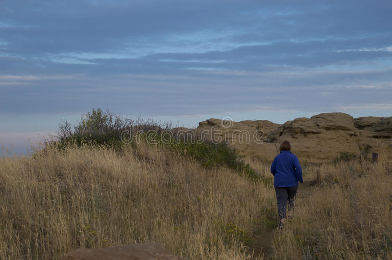 Woman Walking on Wilderness Trail. Woman in cornflower blue fleece jacket with her back to the camera, walking on a dirt trail amid tall dried grass toward royalty free stock image