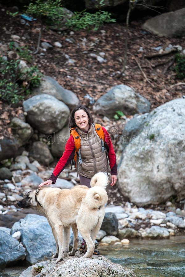 A woman walks with two Caucasian Shepherd dogs in the forest. A girl with a backpack crosses the river. Brunette walking a dog. Training pets. Companion for royalty free stock photography
