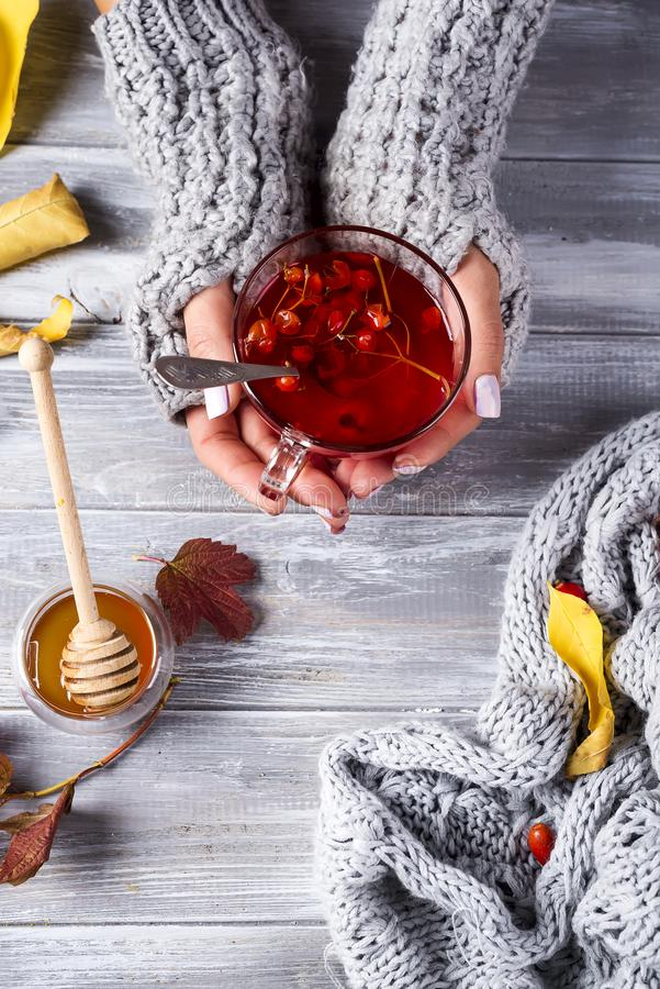 Woman holding a cup of tea. Woman in a warm sweater holding a cup of tea with viburnum and honey flat lay copy space stock photo