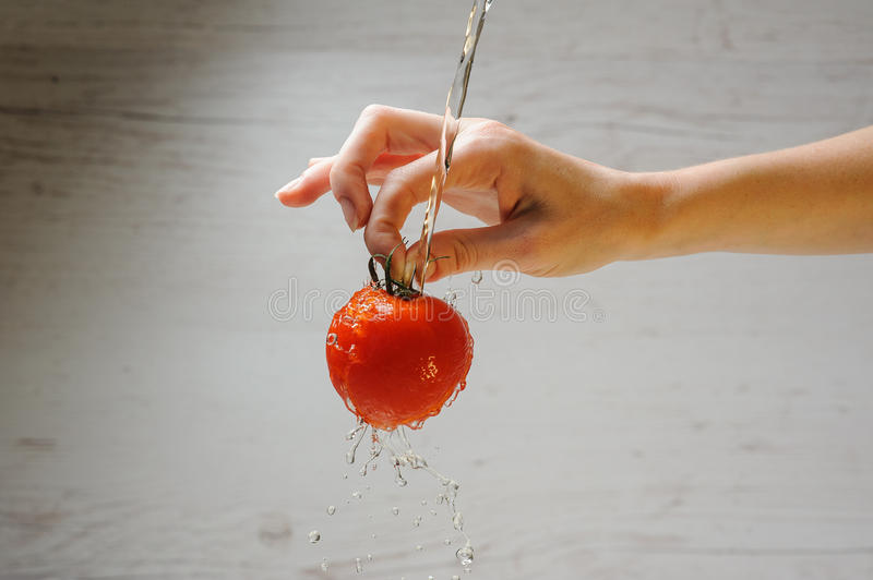 Woman washes a tomato royalty free stock photography