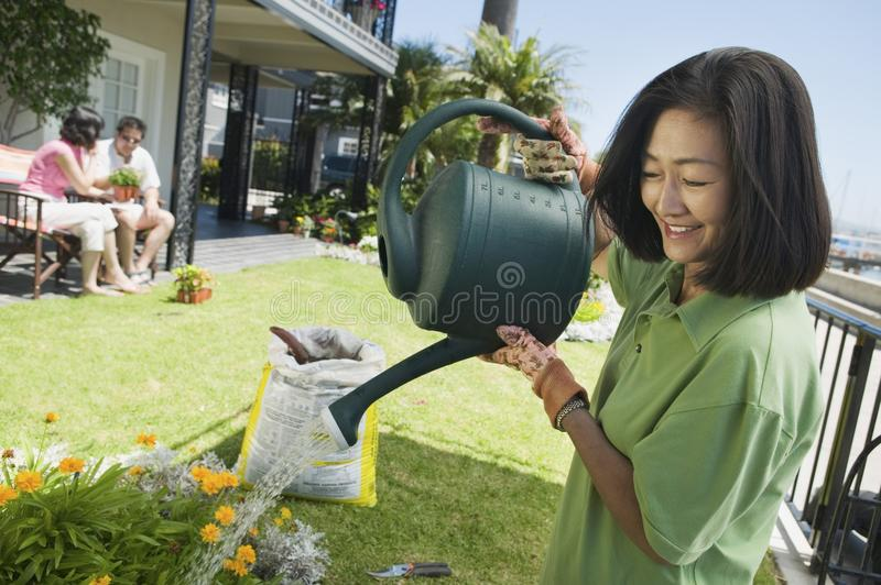 Woman watering plants in garden stock image