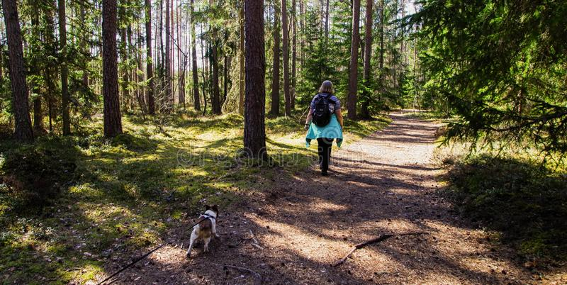 Woman Wearing Black Backpack Walking on the Forest With Her Dog stock photography