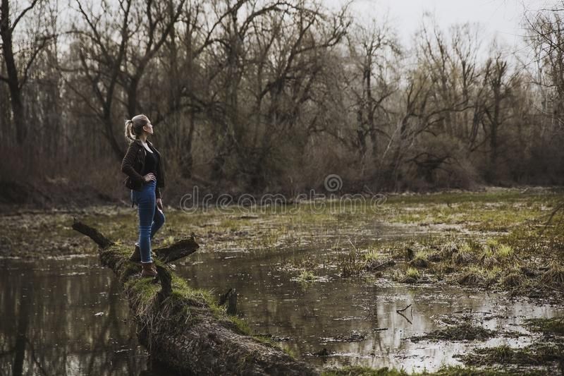 Woman Wearing Black Cardigan and Blue Pants Looking on Brown Forest stock photography