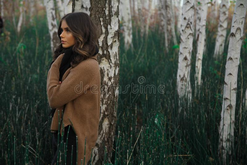 Woman Wearing Brown Sweater Standing on Woods Surrounded by Grass royalty free stock photo