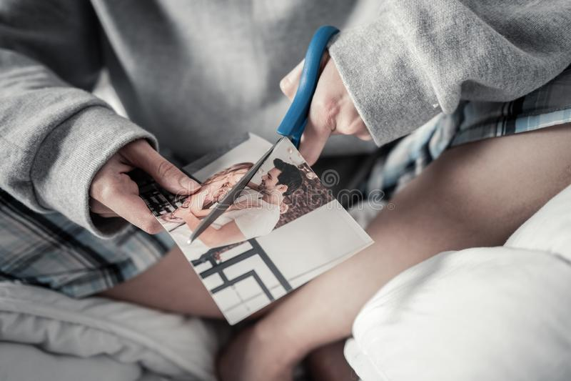Woman wearing grey sweatshirt cutting photo with ex husband royalty free stock image