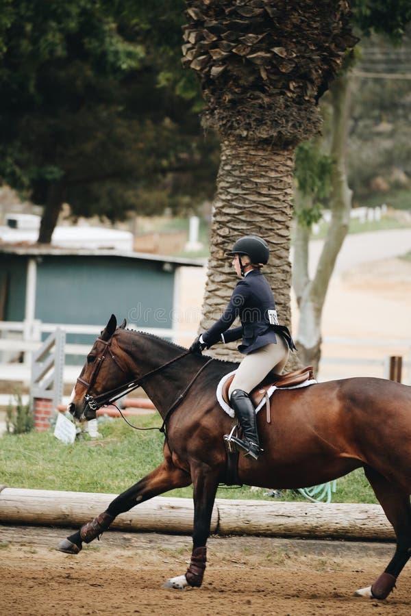 Woman Wearing Helmet Riding Horse royalty free stock photos