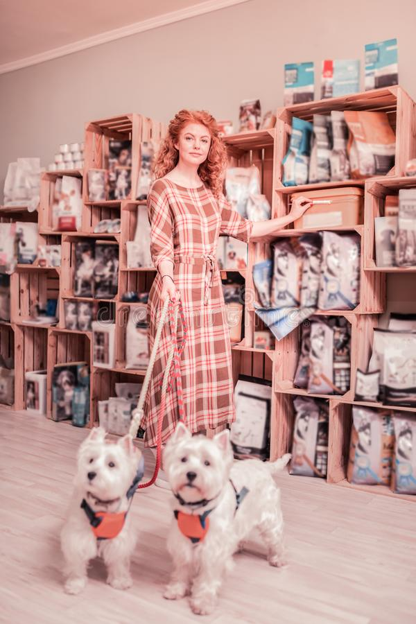 Woman wearing long squared dress standing near her dogs royalty free stock photo