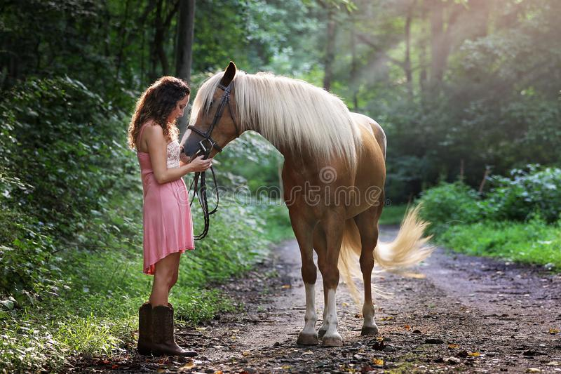 Woman Wearing Pink Dress Standing Next to Brown Horse royalty free stock photos