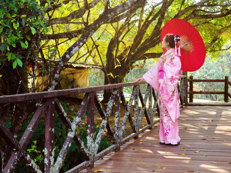 Woman is wearing Pink and flower Japanese Traditional Dress Kimono. Girl is holding red umbrella. Lady is standing and walking on the wooden bridge in the royalty free stock photo