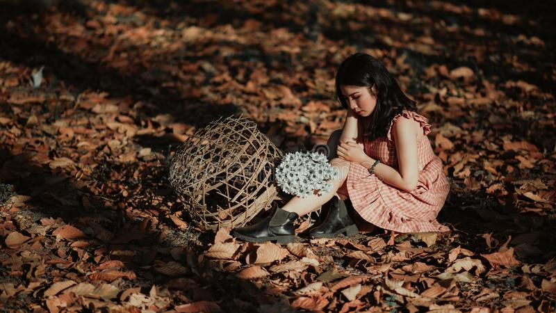 Woman Wearing Red Dress Sitting on Brown Ground With Woven Brown Basket stock images