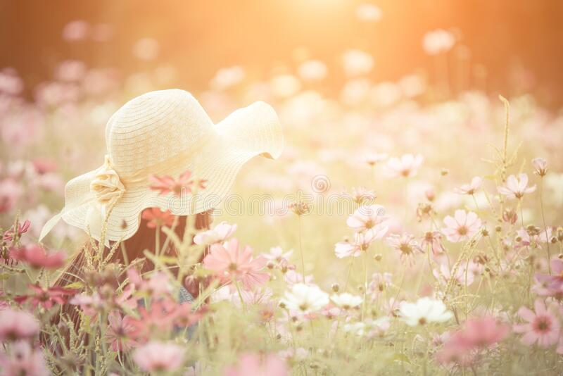 Woman wearing a red hat in a field of flowers.  royalty free stock photo