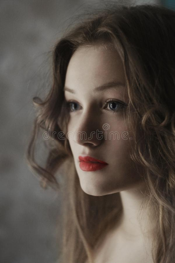 Woman Wearing Red Lipstick And Brown Eyebrow Liner Free Public Domain Cc0 Image