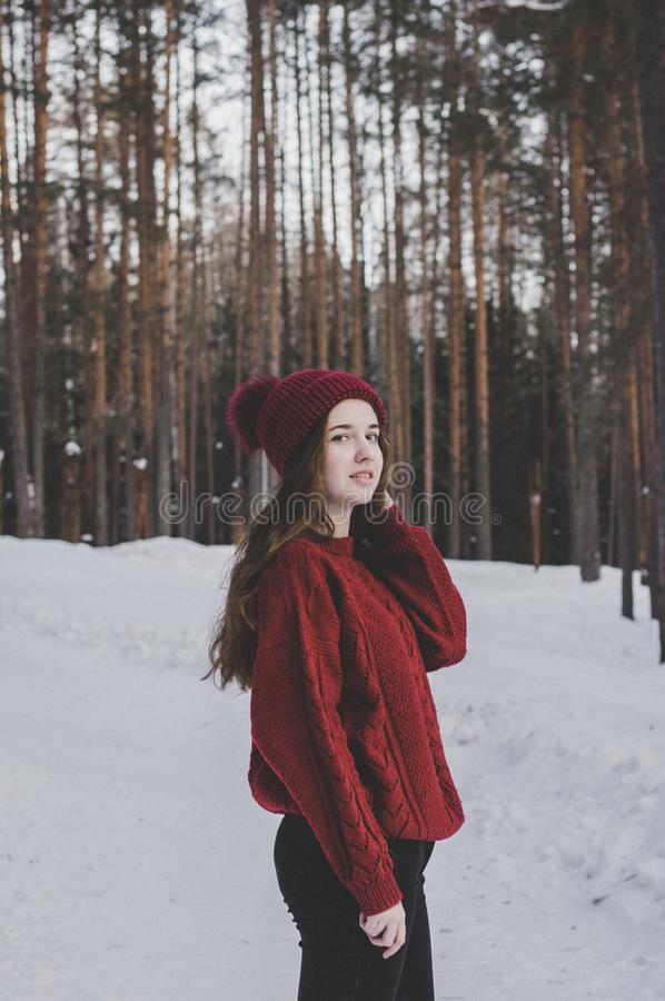Woman Wearing Red Sweater and Red Beanie Under Forest royalty free stock images