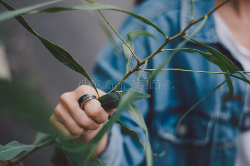 Woman wearing a ring. And holding flowers royalty free stock image