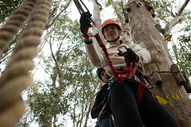 Woman wearing safety helmet fixing carabiner in rope in the forest stock image