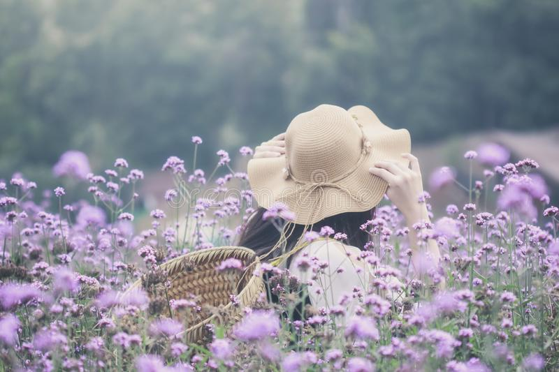 Woman wearing sun hat and bamboo basket visiting Verbena flower field. Image with film camera filter.  stock images