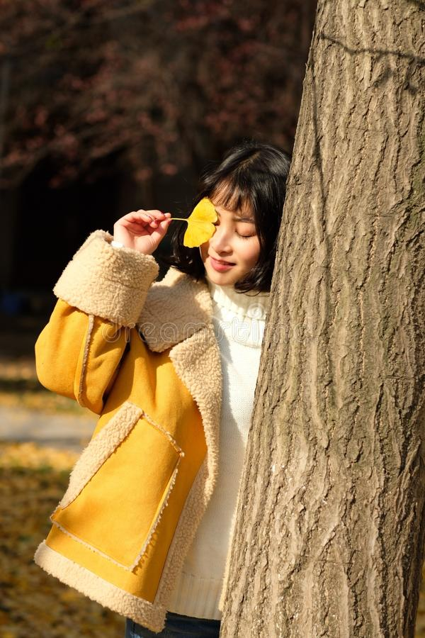 Woman Wearing Yellow Jacket Holding Yellow Leaf stock photos