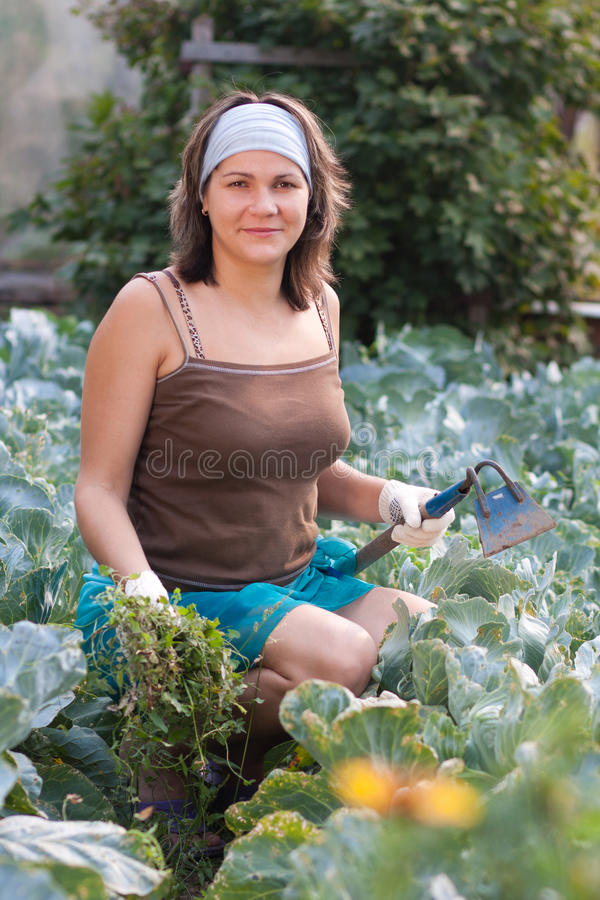 Woman weeding vegetable garden royalty free stock photos