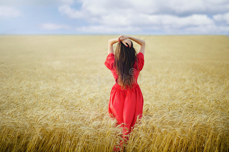 Woman in a wheat field in a red long dress looks into the distance, view from the back. stock image