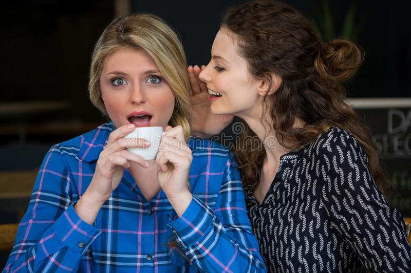 Woman whispering secret into female friend ear in coffee shop stock image
