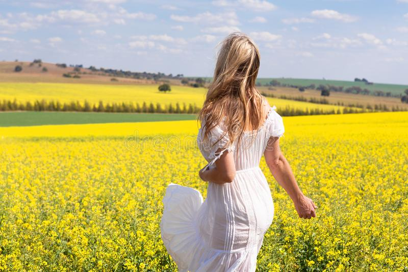 Woman in white dress looking out over fields of golden canola stock image