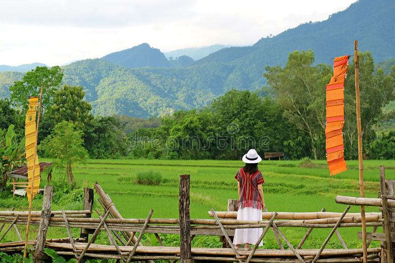 Woman in white hat looking at the vibrant green paddy field from a bamboo bridge royalty free stock photography