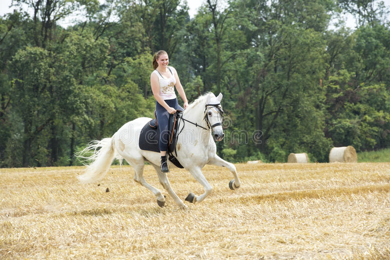 Woman on white horseback on stubblefield. Young woman on white horseback riding over stubblefield royalty free stock photography