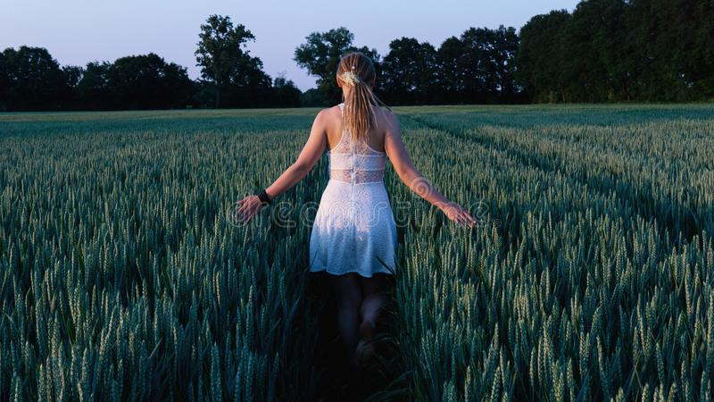 Woman in White Sleeveless Mini Dress Standing Between Grass Field royalty free stock photos