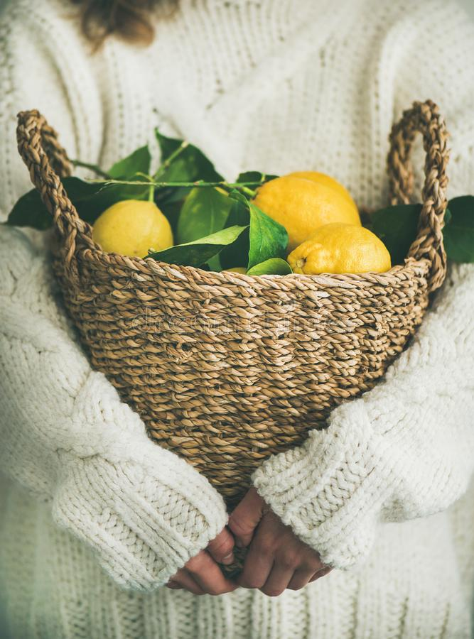 Woman in white woolen sweater holding basket of fresh lemons royalty free stock image