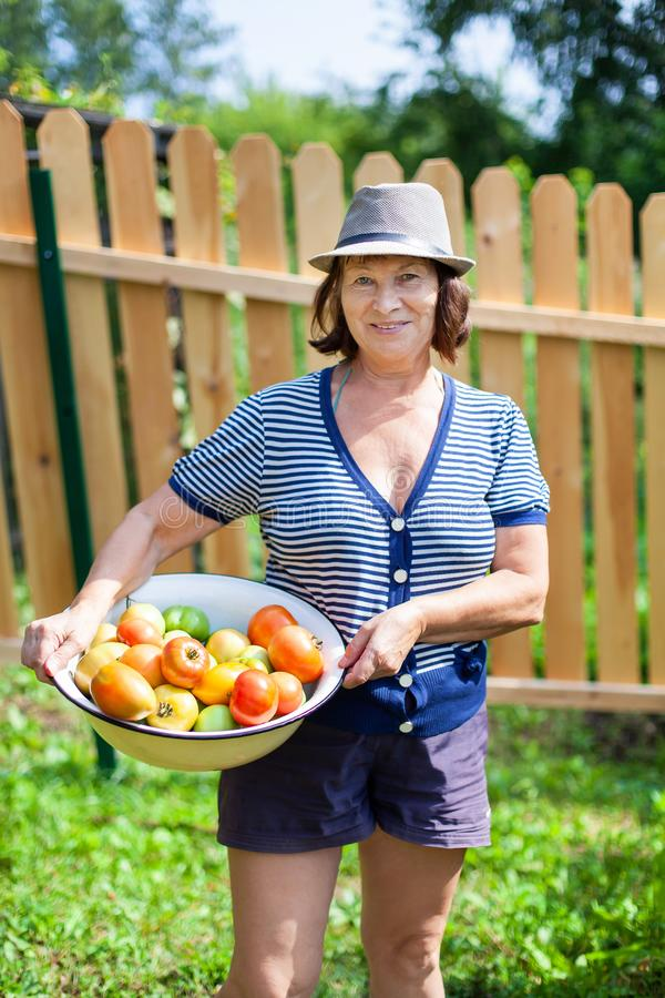 Woman whith tomatoes stock photography