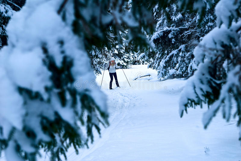 Download Woman in the winter forest stock photo. Image of cross - 13169698