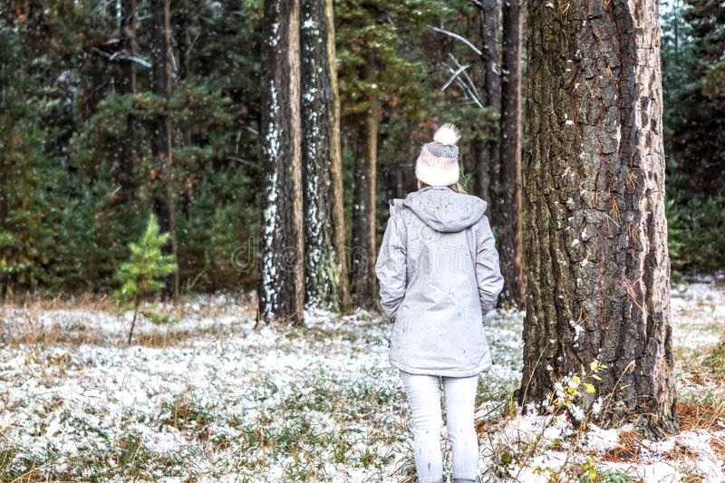 Woman winter wanderings in the pine forest dusted with snow royalty free stock image