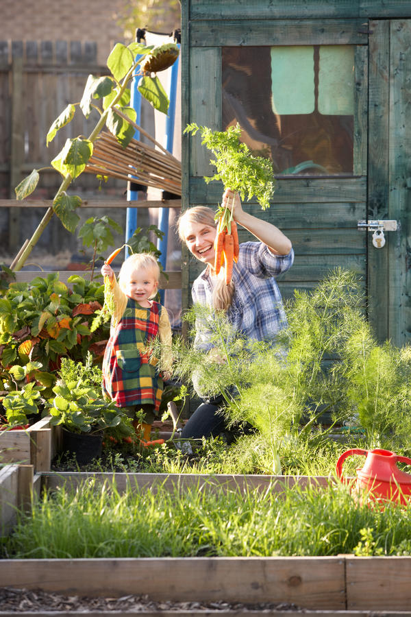 Woman working on allotment with child royalty free stock images