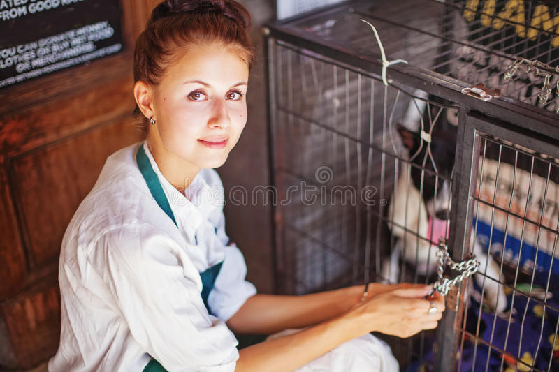 Woman working in animal shelter royalty free stock images