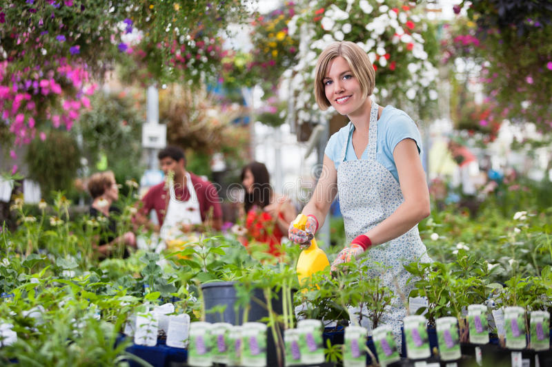 Download Woman Working In Greenhouse Royalty Free Stock Image - Image: 21650706