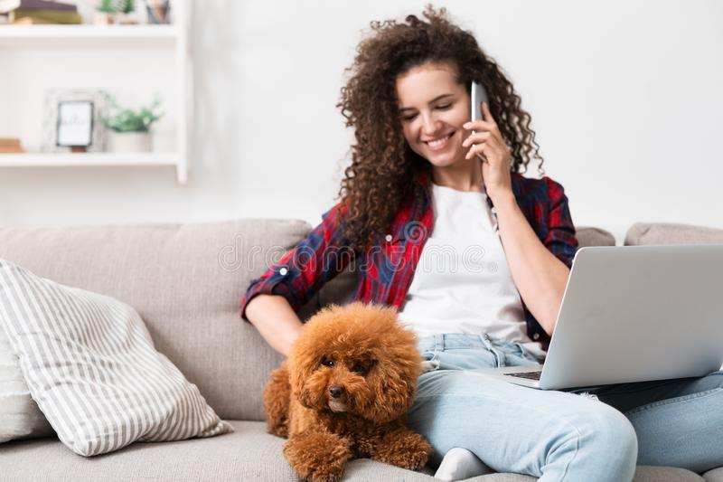 Woman working at home with cute dog. Comfortable pastime at home with pet. Young woman talking on phone and caressing poodle puppy, remote working on laptop at stock photos