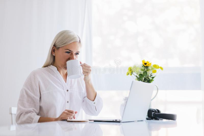 Woman working at home on a laptop royalty free stock photos