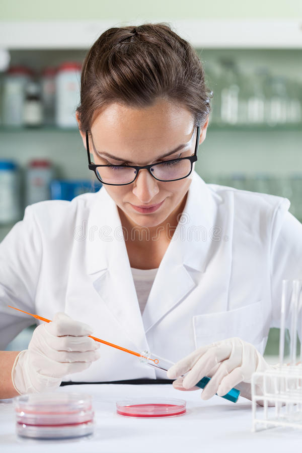 Woman working in laboratory stock photos